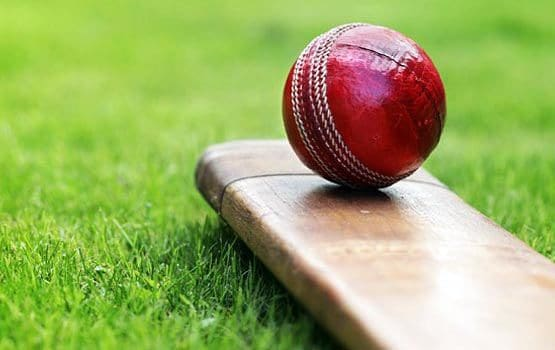 How you can Win Money Betting on Cricket?
